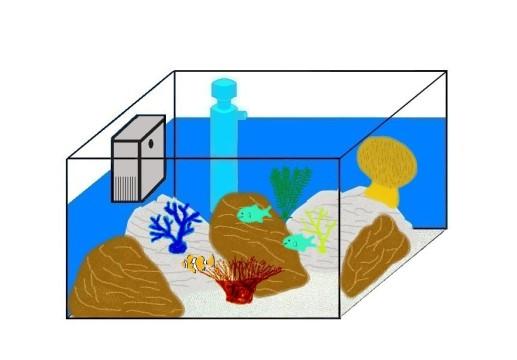 einrichtung eines salzwasseraquariums. Black Bedroom Furniture Sets. Home Design Ideas